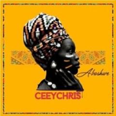 CeeyChris - Abashwe